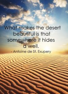 """what makes the desert beautiful is that somewhere it hides a well"" -- Antoine de Saint-Exupéry, The Little Prince"