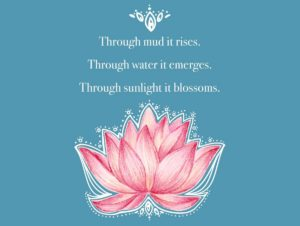Through mud it rises Through water it emerges Through sunlight it blossoms